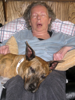 Willow, the therapy dog, and her Grandma.